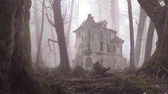 39-Casa solitaria, abandonada en medio del bosque