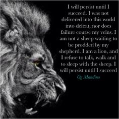 I will persist until I succeed....