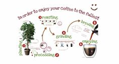 A Prezi presentation all about coffee. This shows us a good example of using Prezi for sharing content for training purposes. Try it on a tablet!
