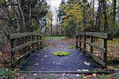 mano kellner, nature mandala, wienhausen Land Art, Garden Bridge, Outdoor Structures, Nature, Mandalas, Easy Mandala, Black And White Pictures, Monochrome, Naturaleza