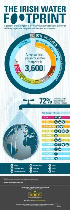 The Irish Water Footprint