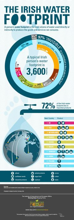 The Irish Water Footprint