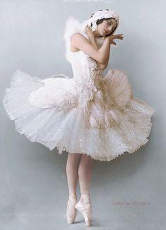 Colored photography of prima ballerina Anna Pavlova, dress by Leon Bakst for ballet Swan Lake, 1905 Anna Pavlova, Ballerina Costume, Ballet Costumes, Dance Costumes, Swan Lake Costumes, Baby Costumes, Ballet Art, Ballet Dancers, Ballerinas
