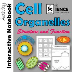 Cell Organelles Structure and Function Interactive Noteboo