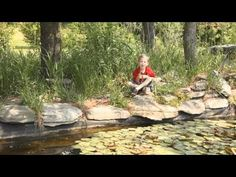 Tadpoles to Frogs.   An educational video that shows the life cycle of a tadpole (pollywog) to a frog.  Hosted by two young boys, Ethan Spencer and Justin Spencer.