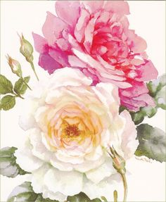 Wendy Tait - Watercolour Flowers