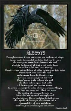 ♡ raven