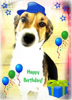 HAPPY's Happy Birthday!