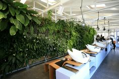 Hair salon wall green