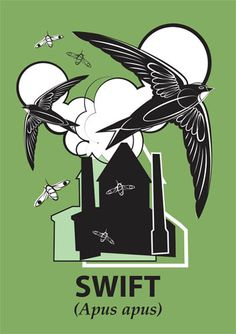 Mark Greco - Swift print.