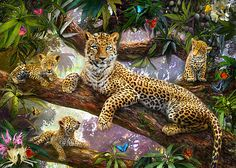 Tree Top Leopard Family by Jan Patrik Krasny - Tree Top Leopard Family Photograph - Tree Top Leopard Family Fine Art Prints and Posters for Sale