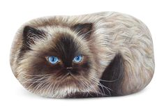 Caesar - acrylic on rock - 10 inches (sold)   Cat Portraits on Commission by Roberto Rizzo   www.robertorizzoart.net/pet-portraits-commissions I found a big (and heavy) rock to portray this elegant Himalayan cat and I'm very satisfied about the result! It's been a hard work but it was worth it...the cat's body is perfectly proportional. Leave a comment with your impression, thank you! #cat #cats #petportraits #paintedrocks #rockpainting #rockpaintingart #petlovers #handmade #art #fineart…
