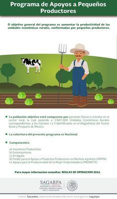 El objetivo general del programa es aumentar la productividad de las unidades económicas rurales, conformadas por pequeños productores. SAGARPA SAGARPAMX