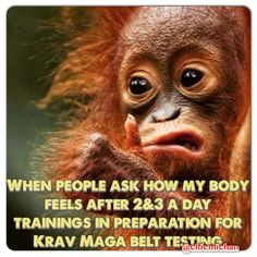 Krav Maga, sparring, DOMS, training like a fiend! Orange belt I'm coming for you! Hiit like a girl!