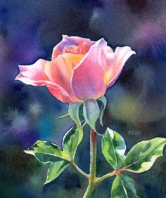 FAIR AND BRIGHT watercolor rose floral painting -- Barbara Fox