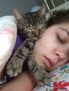I Will Sleep Here - funnycatsite.com