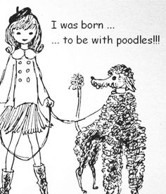 Born to be with poodles