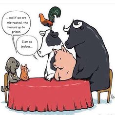 Say no to selective compassion #vegan