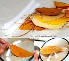 make the autumn leaves last!