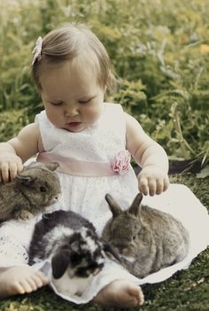 Little girl with three bunnies  | followpics.co