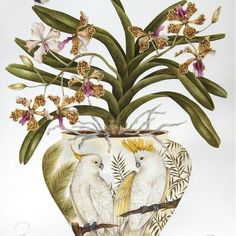 A vintage piece, painted in 2008 and one of my very favourite paintings ever! #kellyhiggs #kellyhiggsdesign #kellyhiggsbotanicalart #birdpainting #birdsandflowers #botanical #beautifulart #cockatoos #interiorinspiration