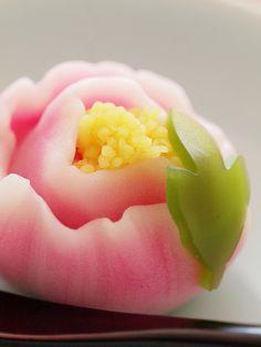 "Japanese Sweets, ""wagashi"", 椿 (spring)Tsubaki - Camellia Japanese Sweets, Japanese Pastries, Japanese Wagashi, Japanese Food, French Pastries, Desserts Japonais, Asian Desserts, Gourmet Desserts, Health Desserts"
