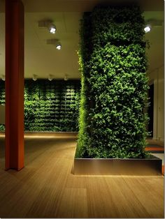 Green walls are a new way to bring plants into any space that could use a little sprucing up. Plus, plant are proven to help tone down stress levels and who couldn't live with a little less stress?