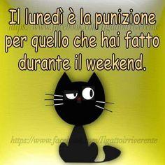 Frasi on pinterest buongiorno coaching and ios for Buongiorno assonnato