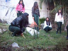 Estudiantes del #P01Cuernavaca implementan programas sustentables para contribuir a conservar el medio ambiente.