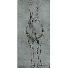 Image result for icelandic horse art