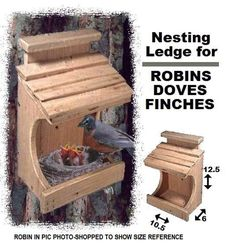 Bird House Plans 730779477022882398 - Ark Workshop Cedar Robin House Nesting Ledge Shelf Platform also for Doves & Finches Bird House Feeder, Diy Bird Feeder, Humming Bird Feeders, Small Bird Feeder, Bird Suet, Wood Projects, Woodworking Projects, Woodworking Machinery, Woodworking Furniture