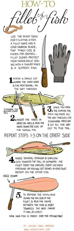 Infographic On How To Fillet A Fish - Tap The Link Now To Find Gadgets for Survival and Outdoor Camping Camping Survival, Survival Tips, Survival Skills, Survival Food, Survival Fishing, Wilderness Survival, Outdoor Survival, Survival Knife, Slippery Fish