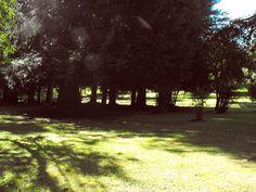 Osorno, Chile Celestial, Explore, Sunset, Outdoor, Places, Outdoors, Exploring, Outdoor Games, Outdoor Living