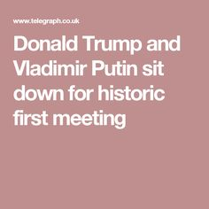 Donald Trump and Vladimir Putin sit down for historic first meeting