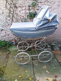 I want a vintage pram so that when I have a large lizard, i.e. a lace monitor or a perentie, then I'll put it in with a little dainty bonnet on and go for a walk through the park where there are lots of people <3