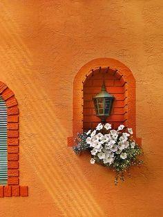 orange window and flower niche (codiceotto-OTTOKALOS)