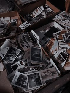 Book Aesthetic, Character Aesthetic, Aesthetic Pictures, Swift Animal, Aquarius And Cancer, Roman, Wattpad, Dark Photography, Life Is Strange