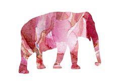Elephant Watercolor illustration. Fine Art door Lemonillustrations, €15.50