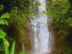 I Miss You, My Hawaii by Na Leo Pilimehana