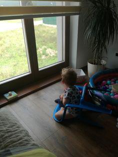 Windows, Window