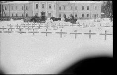 Гатчина. 1941-1944