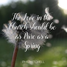 The Love of God in the Church should be as Pure as a Spring