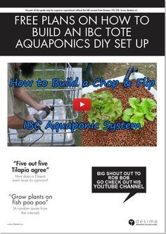 Download this FREE PDF guide for building your own IBC Tote, backyard aquaponics system. It's basically the same information that is in this blog post, but organised so that you can print it out. Enjoy!