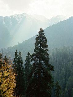 15 Breathtaking Photos of Kashmir, India's Most Misunderstood Region