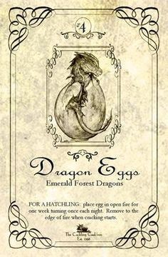 Dragon Eggs and other Apothecary Jar Labels Halloween Apothecary Labels, Halloween Potion Bottles, Halloween Labels, Apothecary Jars, Halloween Forum, Halloween Printable, Fete Halloween, Halloween Projects, Holidays Halloween