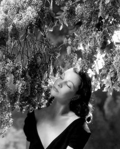 Cecil Beaton: Vivien Leigh for British Vogue, 1946.