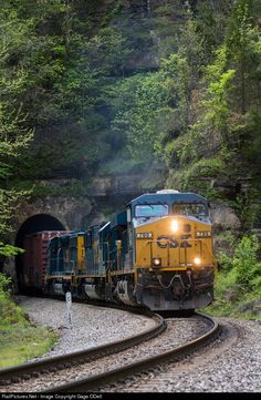 RailPictures.Net Photo: CSX 799 CSX Transportation (CSXT) GE ES44AC at Livingston, Kentucky by Gage ODell