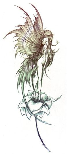 http://www.tattooparadise.info/images/Fairy_Tattoo_by_j3nov4.jpg