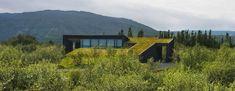 Inhabitat - - Yeşil Tasarım, Yenilik, Mimarlık, Çevre Dostu Yeşil Binalar yeşil çatılı Hobbit ev herkes sadece 3 gün Green Magic evleri inşa edebilirsiniz