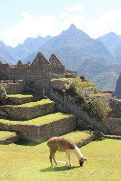 Machu Picchu, Peru - photo by The Red Headed Traveler